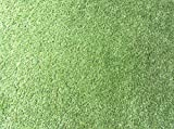 Tej Gifts - Artificial Green Lawn Soft Synthetic Grass Doormat Outdoor Carpet