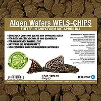Teichpoint Algas de wafers Siluro de chips (Forro Principal para todos los pflanzenfressenden suelo peces y scheuen Ornamentales peces en barquillo Forma)–Siluro Forro en bolsa de 1L