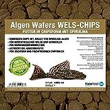 Algen-Wafers Wels-Chips (Hauptfutter für alle pflanzenfressenden Bodenfische und scheuen Zierfische in Waferform) - Welsfutter im 1 Liter Beutel