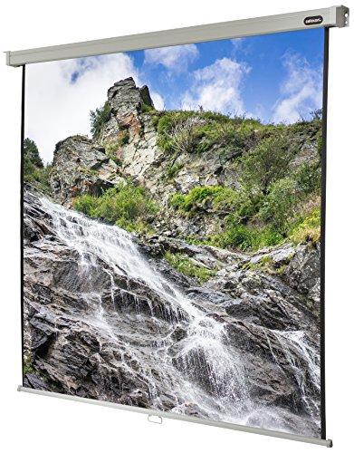 celexon manuell ausziehbare Heimkino- und Business-Beamer-Leinwand 4K und Full-HD Rollo-Leinwand Professional - 180 x 180 cm - 1:1 - Gain 1,2