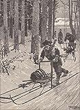 Schlitten fahren - Schwedische Bauern mit dem 'Rennwolf' (Laufschlitten) zur Arbeit fahrend. Ansicht im tief verschneiten Wald. [Grafik]