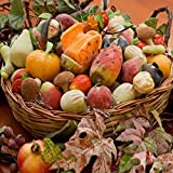 Handwerks tradition mit leidenschaft aus Sizilien: Fruchte aus Marzipan erstklassiger