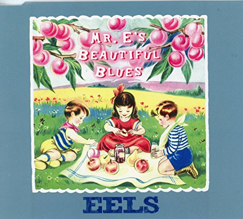 Cover Mr. E's Beautiful Blues