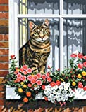 Royal & Langnickel PCS11 - Malen nach Zahlen Künstler Leinwand Serie - Katze im Fenster Small