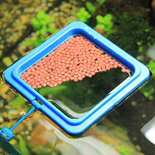 Hinmay Kunststoff Aquarium Fisch Tank Ring Vogelfutterstation Schwimmendes Futter Float Kreis Füttern, quadratisch/rund