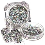 Blue Vessel 1 box Holografische Laser Nailart Pailletten Glitter Pulver Tipps Silber (0.6mm)