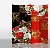 Fine Asianliving - Paravento Tela - Separatore Stanza - 100% non trasparente - Parete divisoria - Decorazioni per interni - Stampe su canvas - Stampa bilateral - Stampe Artistica - 210