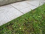 0816 Rasenkanten Metall Beeteinfassung Rasenkante verzinkt (Länge 2m-Höhe 18 cm)
