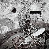Secrets Of The Beehive (180 Gr. Deluxe Black Vinyl)