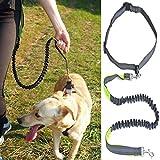 Bluelover Hands Free Leine Hund Blei mit Taillengurt Zum Joggen Laufen Einstellbar