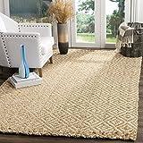 Safavieh natürlichen Fasern Collection nf261a Elfenbeinfarben und natürlichen Bereich Teppich, 3'x 5'