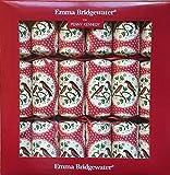 Emma Bridgewater alegría ROBIN petardos de Navidad–nuevo 2016invierno diseño
