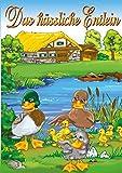 DVD Cover 'Das häßliche Entlein