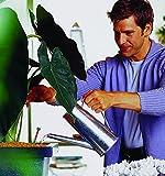 Seramis flüssige Vitalnahrung für Grünpflanzen 500 ml - 4