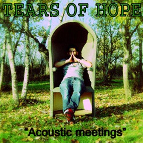 Acoustic Meetings