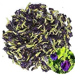TooGet Bio Getrocknete Blau Butterfly PEA, natürlicher Clitoria ternatea Herbals Blauer Tee-Großhandel, erstklassig - 60g