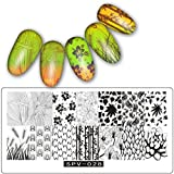 Hot Spiegel Nagel Nail Art Xinan DIY Nail Art Image Stamp Stamping Plates Maniküre Schablone Nail Stamping Plates (, H)