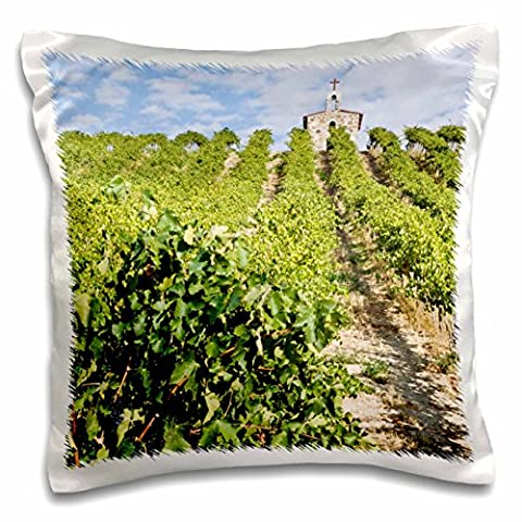 Danita Delimont - Vineyards - WA, Yakima Valley, Syrah Grapes, Red Willow Vineyard - US48 RTI0195 - Rob Tilley - 16x16 inch Pillow Case (pc_96764_1)
