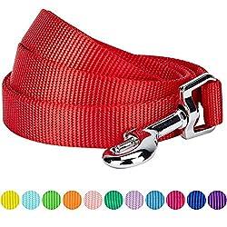 Blueberry Pet 2cm x 150cm Medium Classique Solide Rouge rouge Nylon Laisse pour chien. Collier et harnais assortis vendus séparément