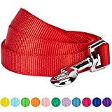 Best Nylon Dog Leashes - Blueberry Pet Durable Classic Solid Color Dog Lead Review