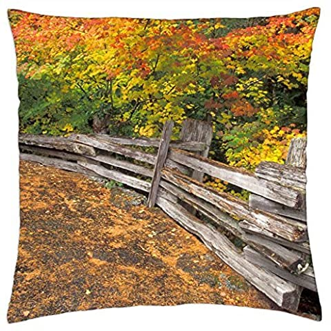 Autumn leaves - Throw Pillow Cover Case (18
