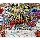 murando Carta da parati 400x280 cm Fotomurali in TNT Murale alla moda Decorazione da Muro XXL Poster Gigante Design Carta per pareti Graffiti Street art f-A-0348-a-b