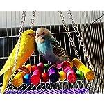 DSstyles Colorful Bird Ladder Wooden Bird Swing Hanging Toys Birdcage Hammock for Pet Bird Parrot Parakeet Budgie… 12