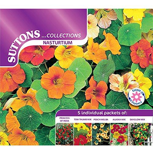 suttons-seeds-139827-nasturtium-seed-collection