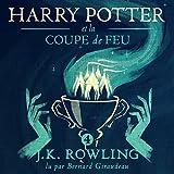 Harry Potter et la Coupe de Feu - Harry Potter 4