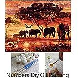 Aksuo Dipingere con i numeri 16 x 20 pollici DIY Olio la Pittura per bambini, studenti e adulti principianti - Gruppo di elefanti al tramonto ( Senza Telaio )