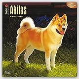 Akitas 2016 - 18-Monatskalender mit freier DogDays-App: Original BrownTrout-Kalender [Mehrsprachig] [Kalender] (Wall-Kalender)