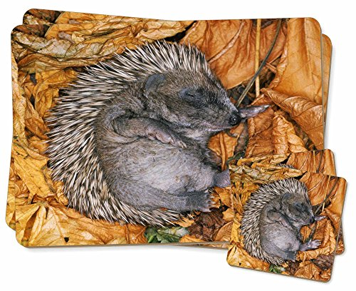 sleeping-baby-hedgehog-twin-2x-placemats-2x-coasters-set-in-gift-box