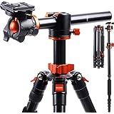 K&F Concept 170cm Kamerastativ, TM2515T1 Stativ mit 90 Grad Mittelsäulen Einbeinsativ-Funktion, 360° Kugelkopf und 1/4'' Gewinde Reisestativ