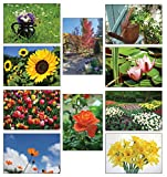 50 Grußkarten Blumen Klappkarten mit 50 Umschlägen Blumen & Garten