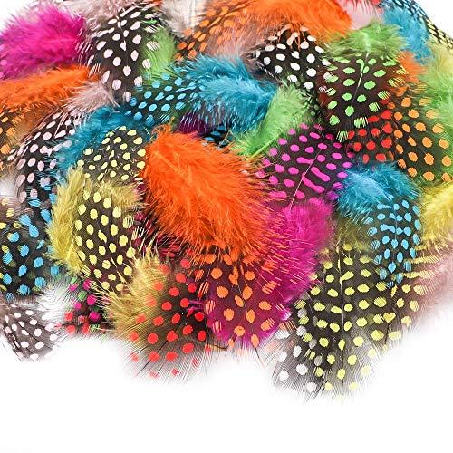 Amaoma Bastelfedern Naturfedern Bunte Federn zum Basteln 200 Stück Indianer Federn für DIY Kunstwerk Dekoration für Karneval Masken Kostüme Hüte oder Haarschmucken 4,5-10 cm 10 Farben - Hut Kostüm Maske