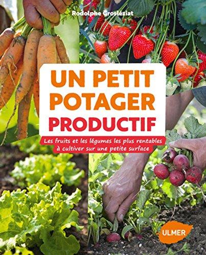 Un petit potager productif : les fruits et les légumes les plus rentables à cultiver sur une petite surface