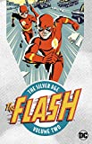 Flash The Silver Age TP Vol 2