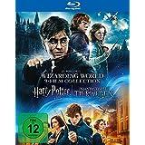 9-Film-Collection: Harry Potter und Phantastische Tierwesen