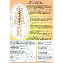 Polarity in the Energetic Body