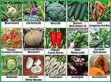 Gemüse Set 2: Broccoli Pastinaken Blumenkohl