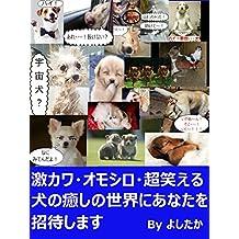 gekikawa omoshiro chouwaraeruinunoiyashinosakainianatawoshoutaisimasu (Japanese Edition)