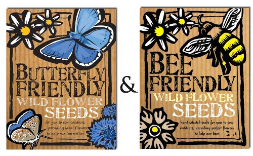 bee-and-butterfly-friendly-wild-flower-seeds-duo-pack