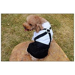 Lesypet® Dog mariage Gentleman shirt Chien Noir Blanc Costumes avec mariage