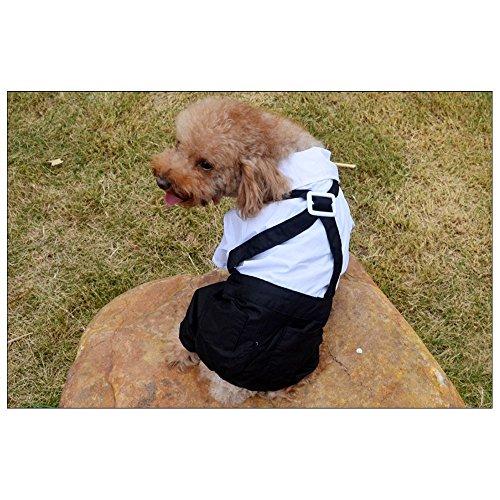 Lesypet Dog Gentleman Hochzeits-Hemd Hund Schwarz Weiss mit Hochzeitsanzuege Tie - Extra Large