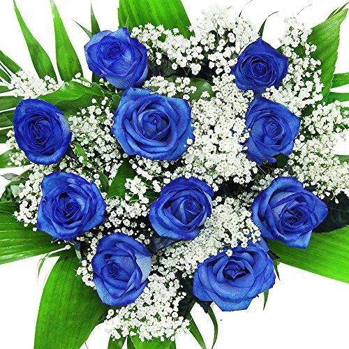 """floristikvergleich.de Blumenstrauß""""10 echte blaue Rosen"""" – Langstielig – Blumen ideal zum Verschenken"""