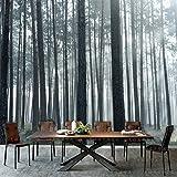 AZZJ AZZJWandmalereien, Nahtlose Tapeten, Café, Wohnzimmer Mit Sofa, Fernsehen Hintergrund Tapeten, Schwarz - Weiß - Wald - Landschaft,Seide Muster