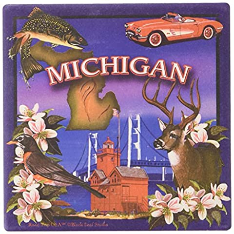 CoasterStone SQ039 Absorbent Coasters, 4-1/4-Inch, Michigan, Set of 4 by CoasterStone