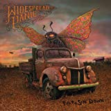 Songtexte von Widespread Panic - Dirty Side Down