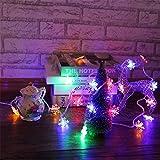 ODJOY-FAN LED Schneeflocken Zeichenfolge Licht Weihnachten Gestalten Zeichenfolge Beleuchtung Party Hochzeit Licht Dekor Beleuchtung Laternenpfahl String Light (Multicolor5M,M)