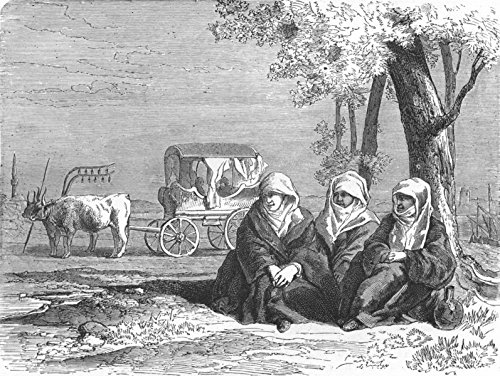 greece-travellers-reposing-banks-of-lake-dojran-antique-print-1880